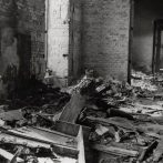 A Magyar Természettudományi Múzeum tragédiája 1956-ban