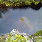 Egy szabad állam Európa szélén – Izland a kora középkorban