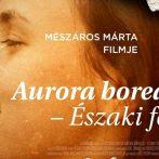 Aurora Borealis – Élet a nemi erőszak után