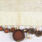 Fejezetek az 1439–1457 közötti magyar történelemből – 3. rész: A belháború első éve