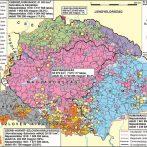Öt év az első világháború alatti kelet-közép-európai nacionalizmusok nyomában